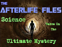 Afterlifefiles